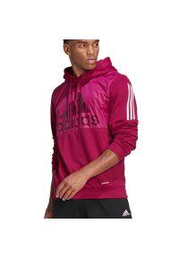 Bluza Adidas elegancka