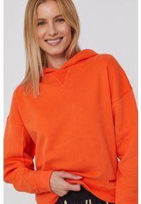 Frieda & Freddies - Bluza. Typ kołnierza: kaptur. Kolor: pomarańczowy. Materiał: dzianina. Długość rękawa: długi rękaw. Długość: długie. Wzór: aplikacja