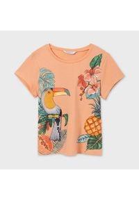 Mayoral T-Shirt 6020 Pomarańczowy Regular Fit. Kolor: pomarańczowy