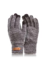 BRODRENE - Rękawiczki męskie zimowe do smartfonów Brodrene R1 jasnoszare. Kolor: szary. Materiał: materiał. Sezon: zima