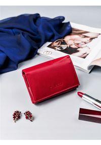4U CAVALDI - Portfel damski czerwony Cavaldi RD-02-GCL RED. Kolor: czerwony. Materiał: skóra