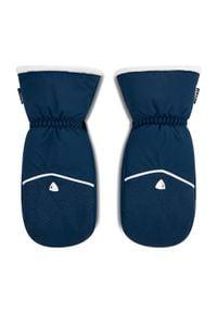 Rossignol - Rękawice narciarskie ROSSIGNOL - W Romy Impr M RLIWG12 Dark Navy 715. Kolor: niebieski. Materiał: poliester, materiał