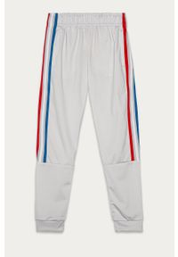 Szare spodnie dresowe adidas Originals na co dzień, z aplikacjami, casualowe
