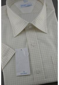 Beżowa elegancka koszula Roy Rony z krótkim rękawem, w kratkę
