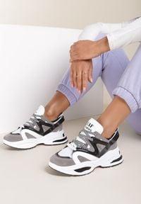 Renee - Szare Sneakersy Bolinisse. Kolor: szary