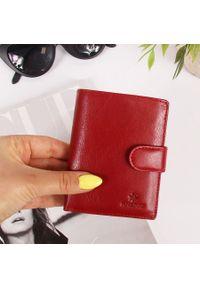 Skórzany portfel czerwony damski Krenig 12089. Kolor: czerwony. Materiał: skóra. Wzór: napisy