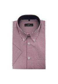 Koszula Giacomo Conti w kratkę, krótka, z krótkim rękawem, na wiosnę
