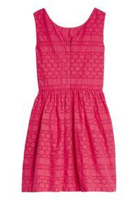 Różowa sukienka TOMMY HILFIGER na co dzień, casualowa
