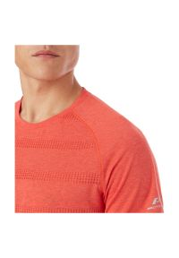 Pro Touch - Koszulka męska do biegania ProTouch Afi 302183. Materiał: bawełna, materiał, tkanina, włókno, skóra, poliester. Długość rękawa: krótki rękaw. Długość: krótkie. Sport: fitness