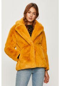 Żółta kurtka Desigual bez kaptura