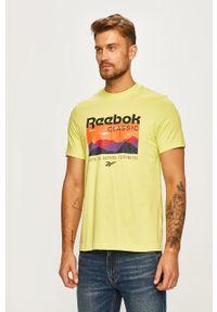 T-shirt Reebok Classic na co dzień, casualowy, z nadrukiem, z okrągłym kołnierzem