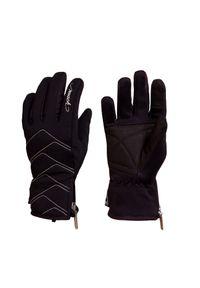 Reusch - Rękawice narciarskie REUSCH LOREDANA TOUCH TEC. Materiał: materiał. Technologia: Primaloft. Sezon: zima. Sport: narciarstwo