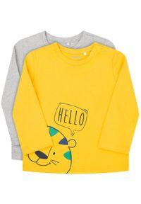 T-shirt Primigi w kolorowe wzory