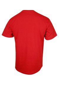 Stedman - Czerwony Bawełniany T-Shirt w Serek, Męski Bez Nadruku -STEDMAN- Koszulka, Krótki Rękaw, V-neck. Okazja: na co dzień. Typ kołnierza: dekolt w serek. Kolor: czerwony. Materiał: bawełna. Długość rękawa: krótki rękaw. Długość: krótkie. Styl: casual