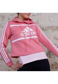 Adidas - Bluza krótka z kapturem Fitness Colorblock. Typ kołnierza: kaptur. Materiał: wiskoza, poliester, bawełna. Długość: krótkie. Sport: fitness