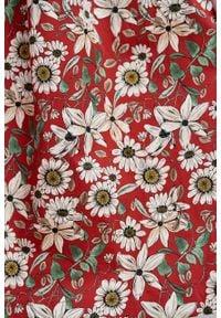 Marie Zélie - Sukienka Aglaia Daglezja czerwona. Typ kołnierza: kołnierzyk stójkowy. Kolor: czerwony. Materiał: bawełna, materiał, elastan. Wzór: kwiaty