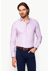 Lancerto - Koszula w Kratę Sindy. Materiał: tkanina, bawełna. Wzór: ze splotem, kratka