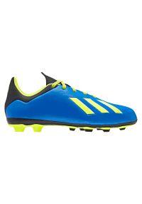 Adidas - Buty adidas X 18.4 FG Jr DB2419. Zapięcie: sznurówki. Szerokość cholewki: normalna. Sport: piłka nożna