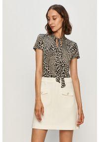 Wielokolorowa bluzka Morgan z krótkim rękawem, krótka