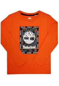 Pomarańczowy t-shirt Timberland