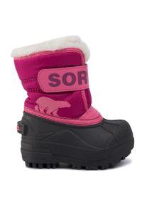 sorel - Śniegowce SOREL - Toodler Snow Commander NV1960 Tropic Pink/Deep Blush 652. Kolor: różowy. Materiał: guma, materiał, skóra ekologiczna. Szerokość cholewki: normalna