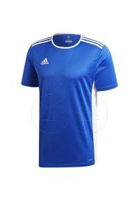 Koszulka sportowa Adidas na fitness i siłownię, z kontrastowym kołnierzykiem