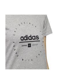 Adidas - Koszulka damska adidas Circural Graphic FM6151. Materiał: dzianina, bawełna. Długość rękawa: krótki rękaw. Długość: krótkie