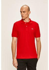 Czerwona koszulka polo Lacoste na co dzień, casualowa