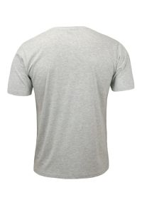 Szary T-Shirt (Koszulka) Męski, Klasyczny, Bez Nadruku, 100% BAWEŁNA - Basic Store. Kolor: szary. Materiał: bawełna. Styl: klasyczny