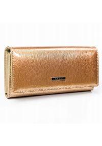 LORENTI - Portfel damski złoty Lorenti GD27-SH-RFID GOLD. Kolor: złoty. Materiał: materiał