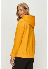 Champion - Bluza bawełniana. Okazja: na co dzień. Kolor: żółty. Materiał: bawełna. Długość rękawa: długi rękaw. Długość: długie. Wzór: aplikacja. Styl: casual