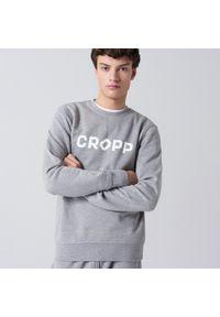 Cropp - Bluza basic z nadrukiem - Jasny szary. Kolor: szary. Wzór: nadruk