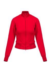 Bluza Y-3 W CL TRK JKT. Typ kołnierza: kołnierzyk stójkowy. Materiał: tkanina, prążkowany, poliamid. Długość rękawa: raglanowy rękaw