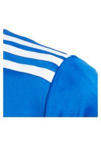 Adidas - Koszulka piłkarska dla dzieci adidas Entrada 18 Jr CF1049. Materiał: dzianina, skóra, materiał, poliester. Technologia: ClimaLite (Adidas). Wzór: ze splotem, paski. Sport: piłka nożna