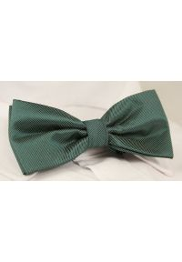 Zielona muszka Alties w prążki, elegancka