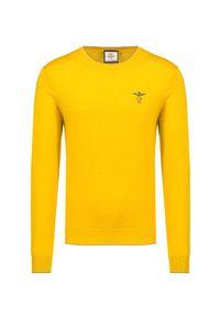 Żółty sweter Aeronautica Militare z haftami, na zimę