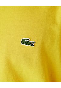 Lacoste - LACOSTE - Żółty t-shirt z logo. Kolor: żółty. Materiał: materiał, jeans. Wzór: haft