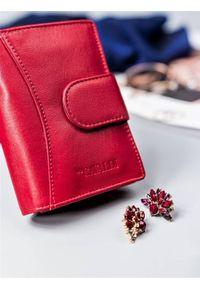 4U CAVALDI - Portfel damski czerwony CAVALDI RD-09-GCL RED. Kolor: czerwony. Materiał: skóra
