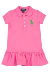 Różowa sukienka Polo Ralph Lauren casualowa, polo