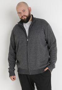 Born2be - Szary Sweter Z Wełną Asoania. Typ kołnierza: golf. Kolekcja: plus size. Kolor: szary. Materiał: wełna. Długość rękawa: długi rękaw. Długość: długie