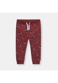 Czerwone spodnie Sinsay