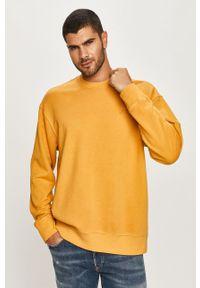 Żółta bluza nierozpinana Levi's® na spotkanie biznesowe, bez kaptura, z aplikacjami