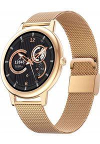 Smartwatch Bakeeley E10 Złoty. Rodzaj zegarka: smartwatch. Kolor: złoty