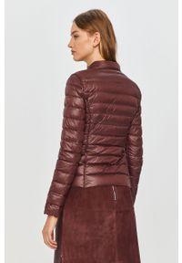 Fioletowa kurtka Patrizia Pepe bez kaptura, klasyczna