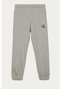 Szare spodnie dresowe Calvin Klein Jeans casualowe, na co dzień