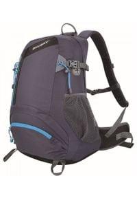 Husky plecak turystyczny Stingy 28L gray. Kolor: szary