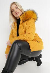 Born2be - Żółta Kurtka Solase. Typ kołnierza: kołnierzyk stójkowy. Kolekcja: plus size. Kolor: żółty. Materiał: futro. Styl: klasyczny