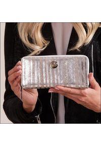 Srebrny portfel FOREVER YOUNG w kolorowe wzory