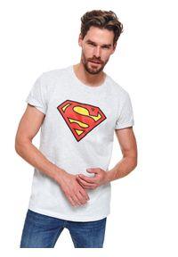TOP SECRET - T-shirt superman. Kolor: szary. Materiał: bawełna. Długość rękawa: krótki rękaw. Długość: krótkie. Wzór: motyw z bajki. Sezon: zima
