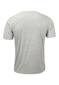 Szary t-shirt Basic Store klasyczny